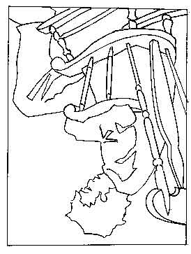 drawing-upside-down-contour-image-tiff