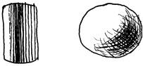 modeling cylinder & sphere